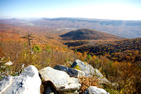 View from the Fire Tower overlook