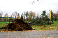 Damage to the baseball field fence caused by a fallen tree on Mercersburg Academy.