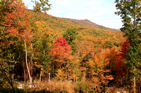Fall foliage near Cowans Gap State Park
